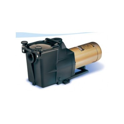 Hayward 1.5 HP Super Pump® for In-ground Pools